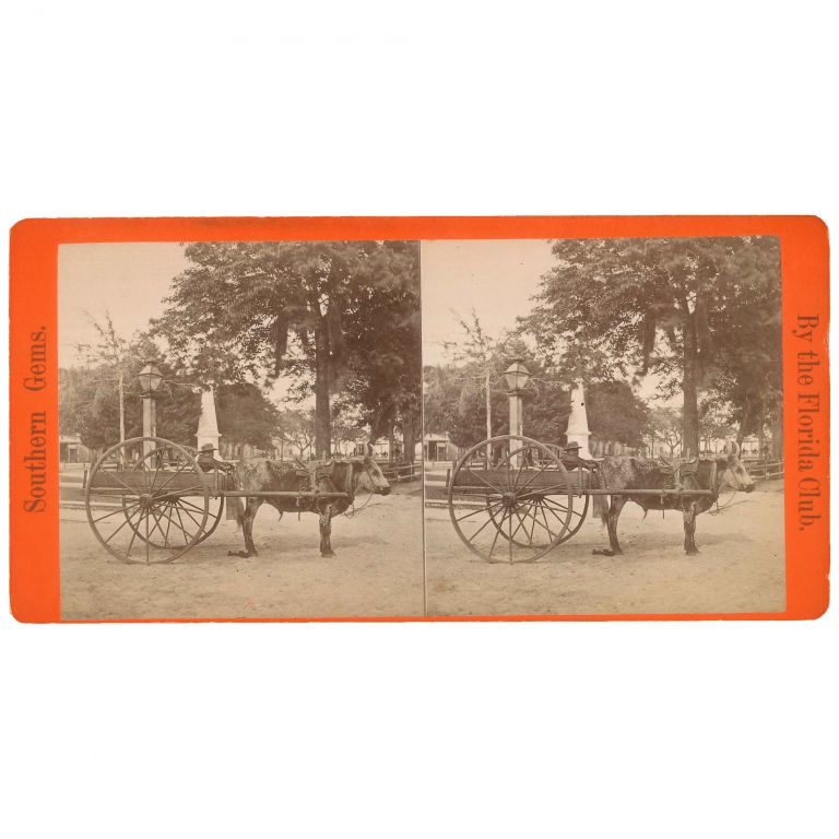 The Lightning Express: Or, the Team of a Florida Cracker [Stereoview]. Florida Club.