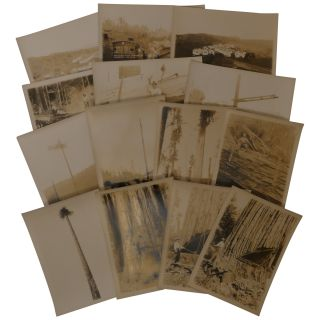 14 Promotional Photographs of Little River Redwood Co. Operations in Crannell, California. Dold,...
