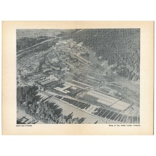 Scotia: Home of the Pacific Lumber Company